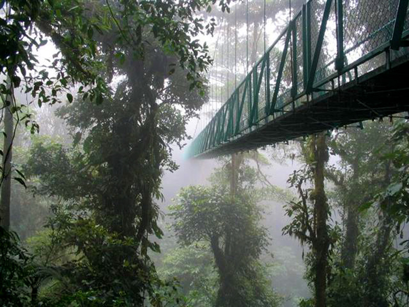 Costa Rica Cloud Forests