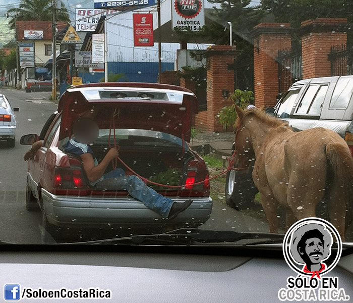 This Could Happen Only in Costa Rica