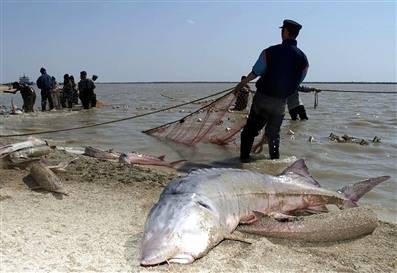Costa Rica to Work on Preventing Illegal Fishing