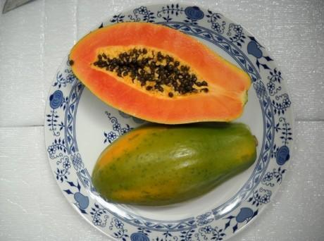 Costa Rican Papaya Will Be At Agitrade 2013