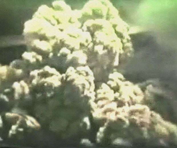 1953 Poas Volcano Eruption Remembered