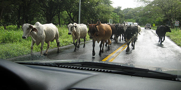 QTips About Driving in Costa Rica