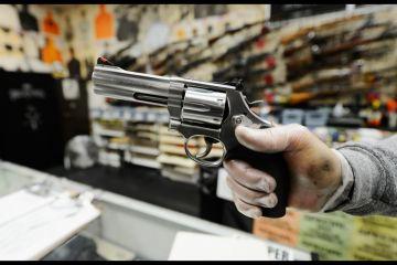 gun_sales