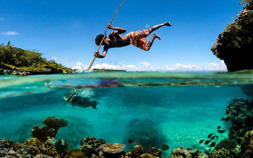 spear-fishing-perfect-timing-e1377053151216