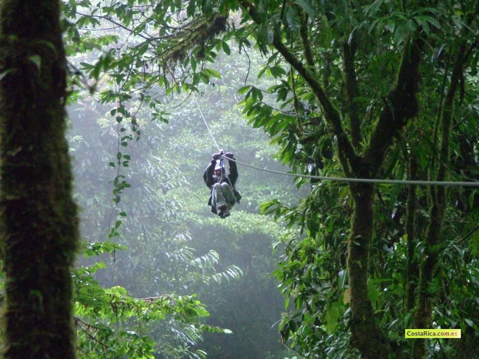 Canopy in Monteverde