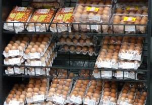 eggs750