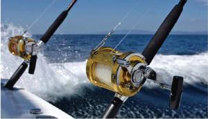 1181752939_Change-Fishing-Canha