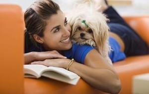 pets-improve-health-intro