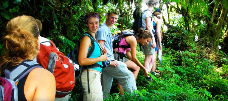 monteverde-costa-rica-summer-tropical-ecology-conservation-jungle-walk