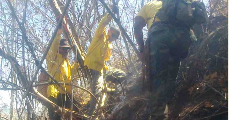 Fires Worry Nicoyans and Paralyze MINAET