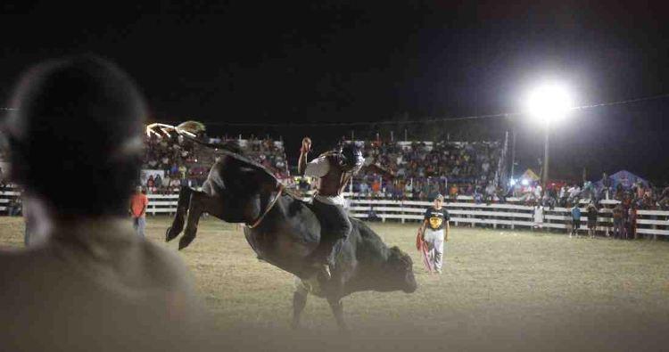 Fiestas Patronales Profitable This Year