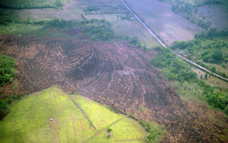 Otro incendio forestal afecta la zona de Los Chiles de Alajuela, frontera con Nicaragua. Durante un sobrevuelo ayer, se pudo observar el daño causado por el fuego, que se acerca a diversas plantaciones. | ALONSO TENORIO.