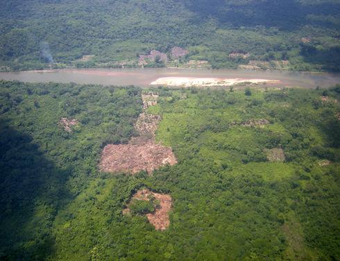 Honduras: Drug traffickers destroy forests