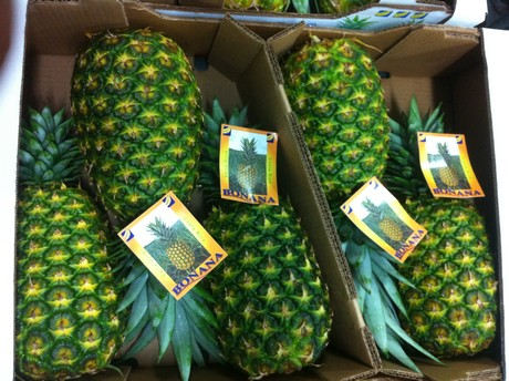Overproduction Reason For Falling Pineapple Prices