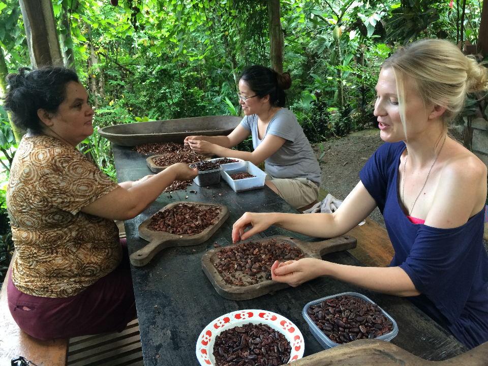 Shucking Cacao in Mastatal, Costa Rica