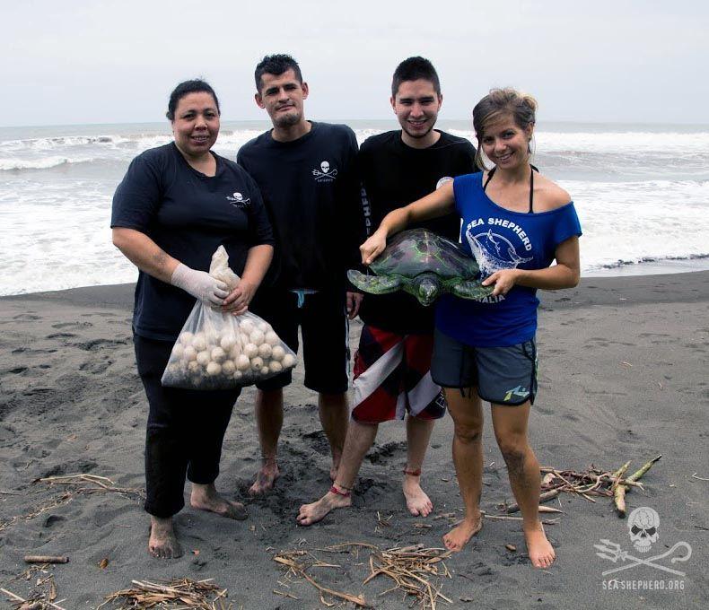 Sea Shepherd crewmembers on patrol