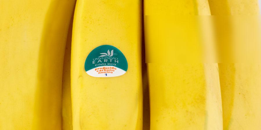 earth_banano