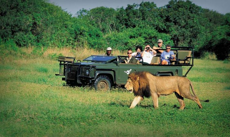 According to the most recent tourism figures, tourist numbers to South Africa increased