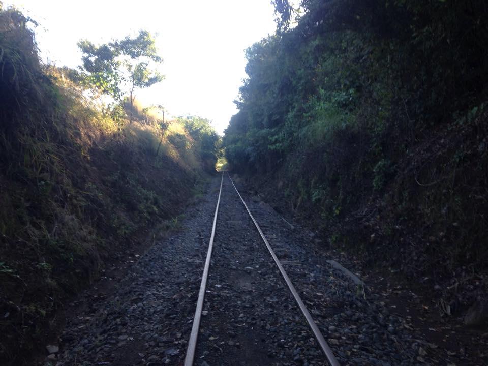 the-train-to-atenas-warner445