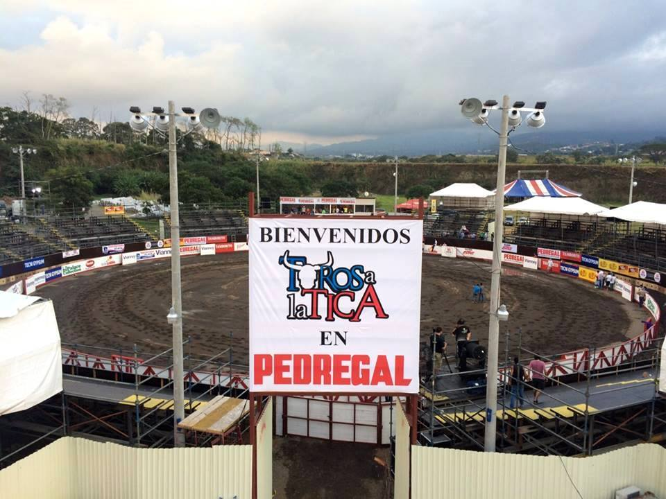 This year, lovers of the bullfights in San Joé have another option to the year end Zapote bulls, the Toros a la Tica in the Pedregal  parking lot in Belen.
