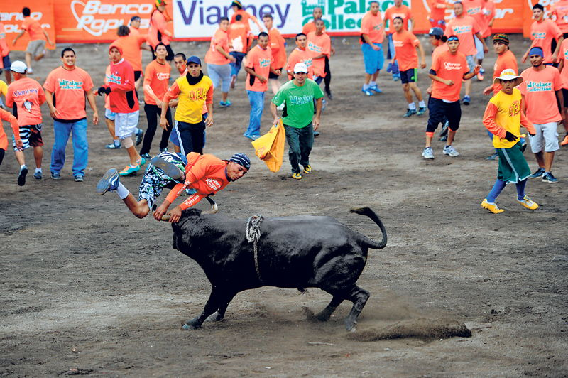 Year end traditions in Costa Rica include the bullfights and horse parades. In the photo, the bullfights in Zapote.  La Nacion/Marcela Bertozzi