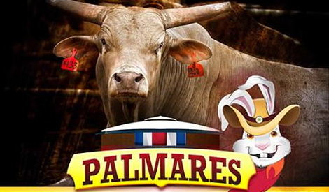 Click here for the Palmares 2015 Facebook official page.