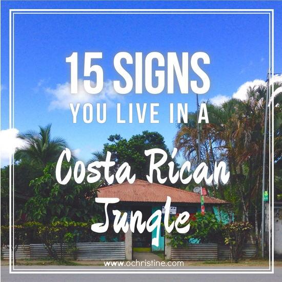 15-signs-you-live-in-a-costa-rican-jungle-olivia-christine