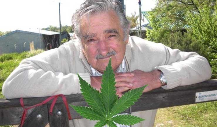 """José Alberto """"Pepe"""" Mujica Cordano is a Uruguayan politician who has been President of Uruguay since 2010."""