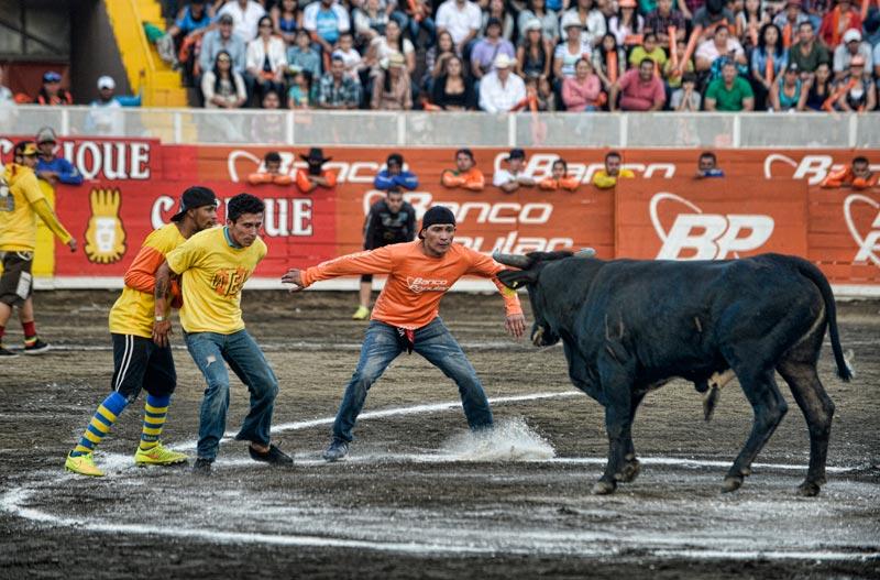 bullfighting_10