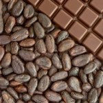 cacaosustentable_4730273-330