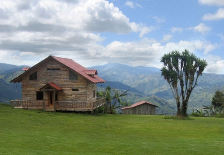 Living in this local wooden house let you experience the beauties of the Costa Rica nature. Photo from niceartlife.com