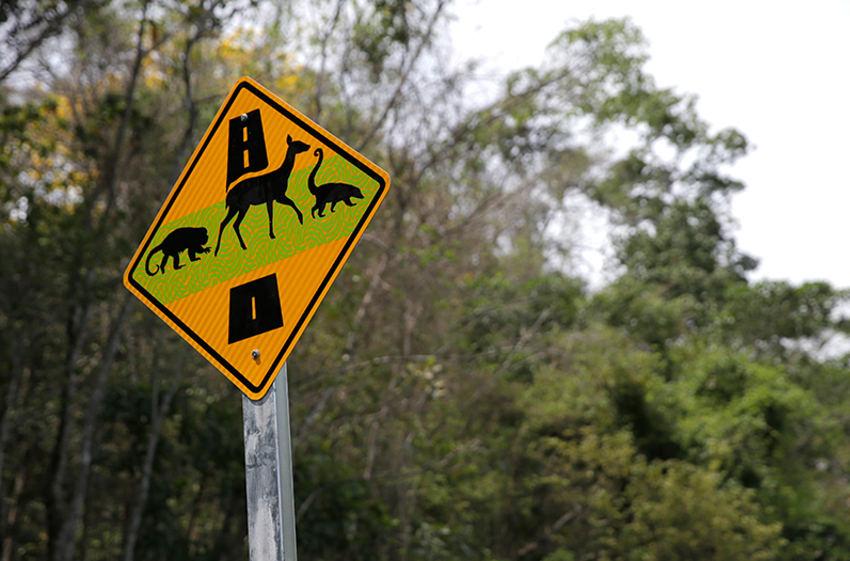 animal-crossing-signs51602