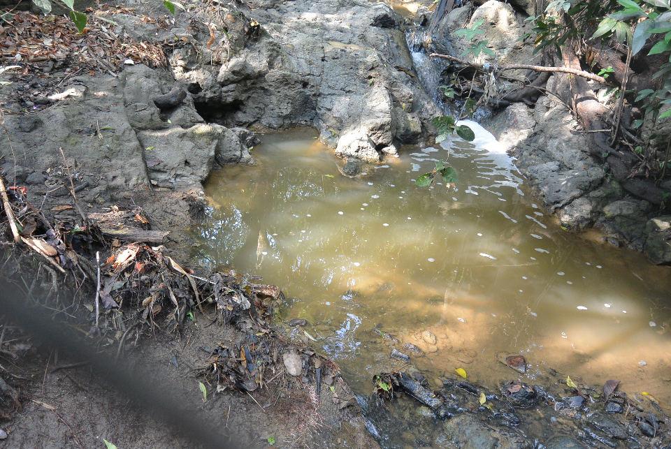 brown-water-2015-04-2951621