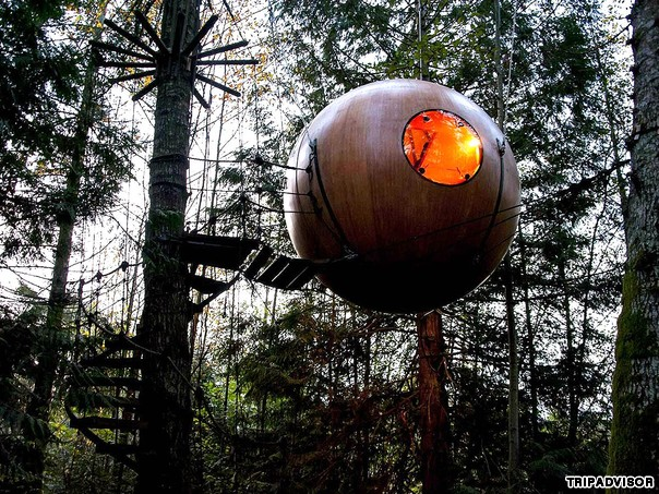 Free Spirit Spheres (Vancouver Island, Canada) There are tree houses for kids, then there are tree houses for adults.