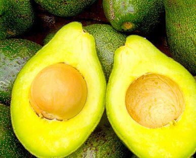 Costa Rica Bans Avocado Imports Due To Sun Blotch Virus