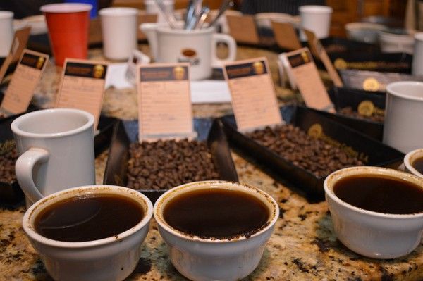 Costa Rica Specialty Coffee Auction