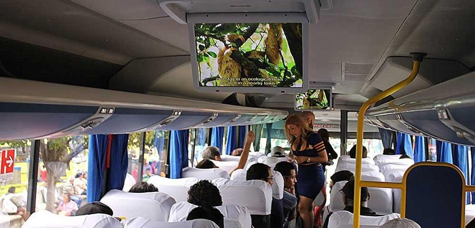 transnica-bus3-1000x480