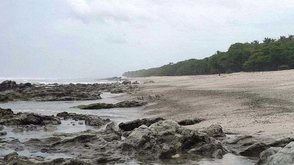 Paradise in Crisis: In Santa Teresa Tourists Sexually Assaulted At River Crossing