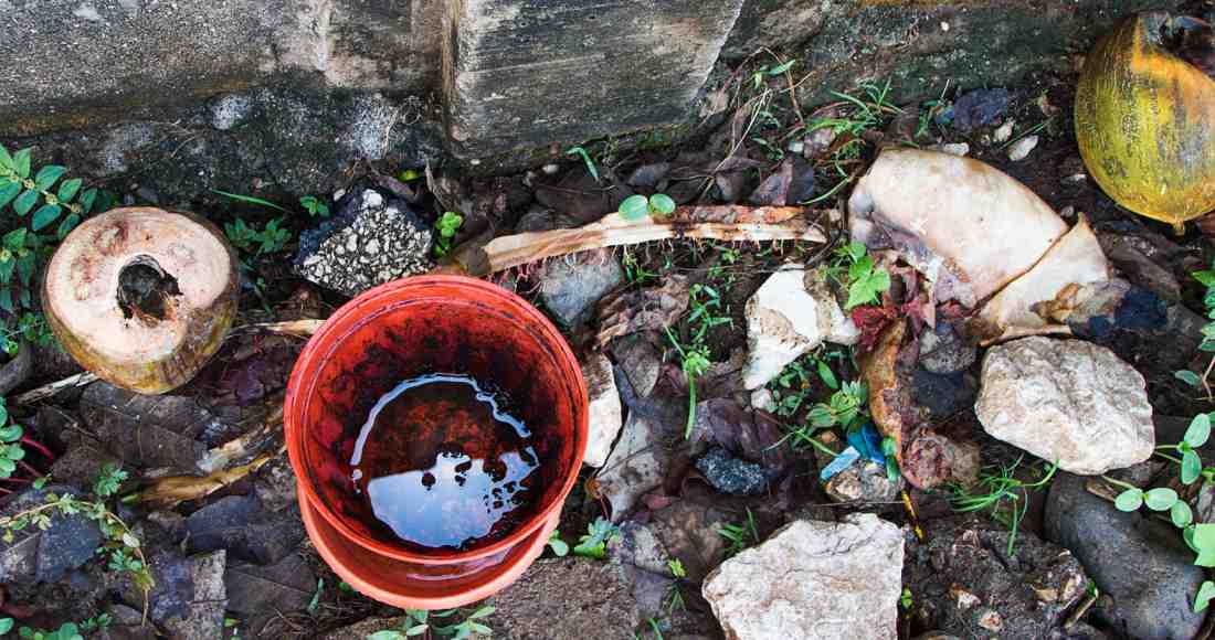 The time of transition from the rainy season to the dry season can cause more stagnant water and thus create breeding sites. Photo by Ariana Crespo