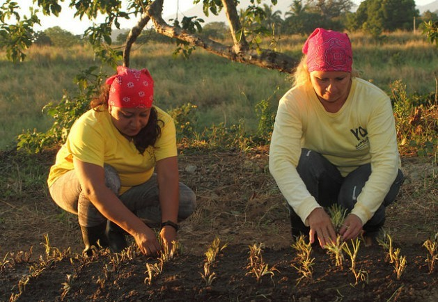 Jannete Salvador and Doris Zabala plant chives on the Izalco prison farm for women in the western Salvadoran department of Sonsonate. The government is extending the use of farm work and other activities in prisons to keep inmates active and productive. Credit: Edgardo Ayala/IPS