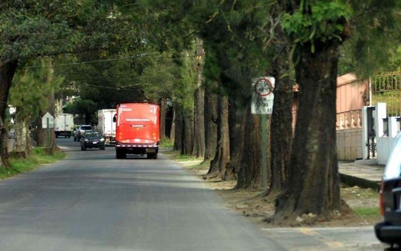 A quiet tree line street in San Francisco de Heredia, Costa Rica