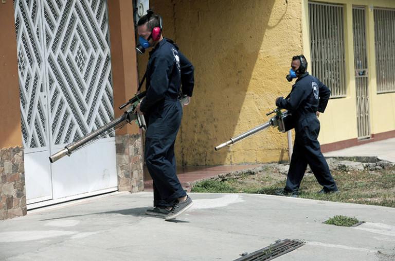 Health Officials: So Far No Evidence Zika Virus Circulating In The Country