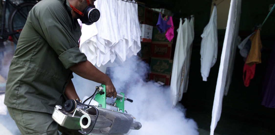 Fumigation is one of the measures to combat the Aedes aegypti, which transmits dengue and chikungunya also is infected bites a healthy person.