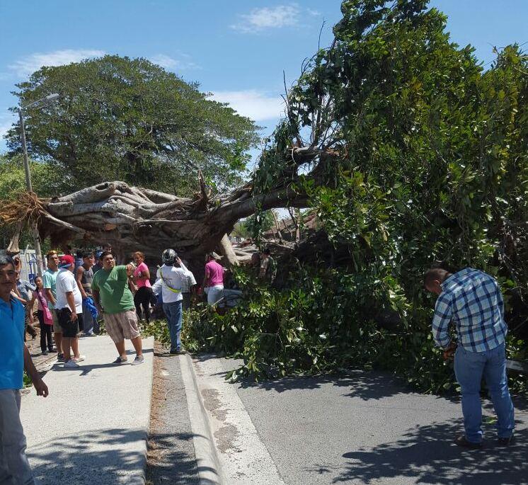 The incident was reported shortly before 11 a. m. near Stadium Edgardo Baltodano. transit Liberia