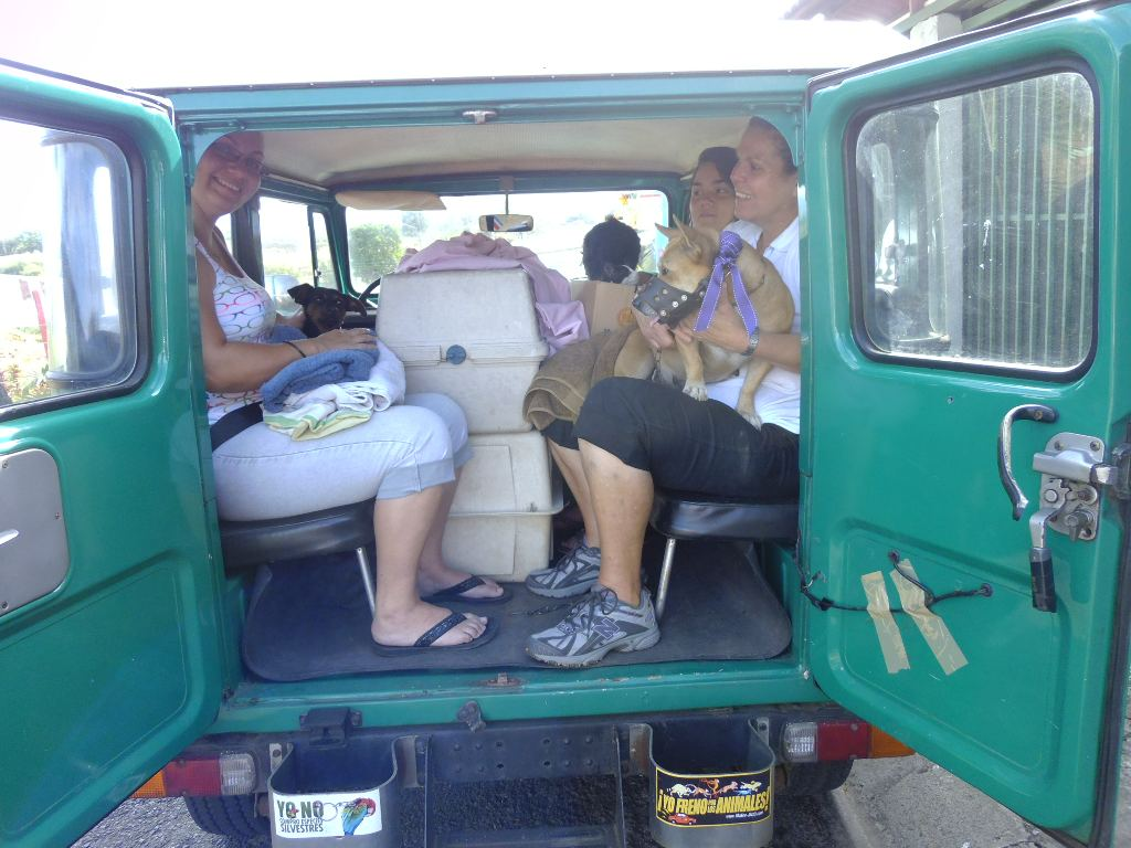 Photo going to a castration campaign with - would you believe - 8 cats, 2 dogs and five people in a Land Cruiser.  This photo is from a campaign last year.