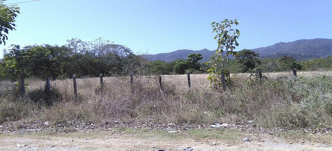 The El Niño phenomenon has been present in Costa Rica since 2014.