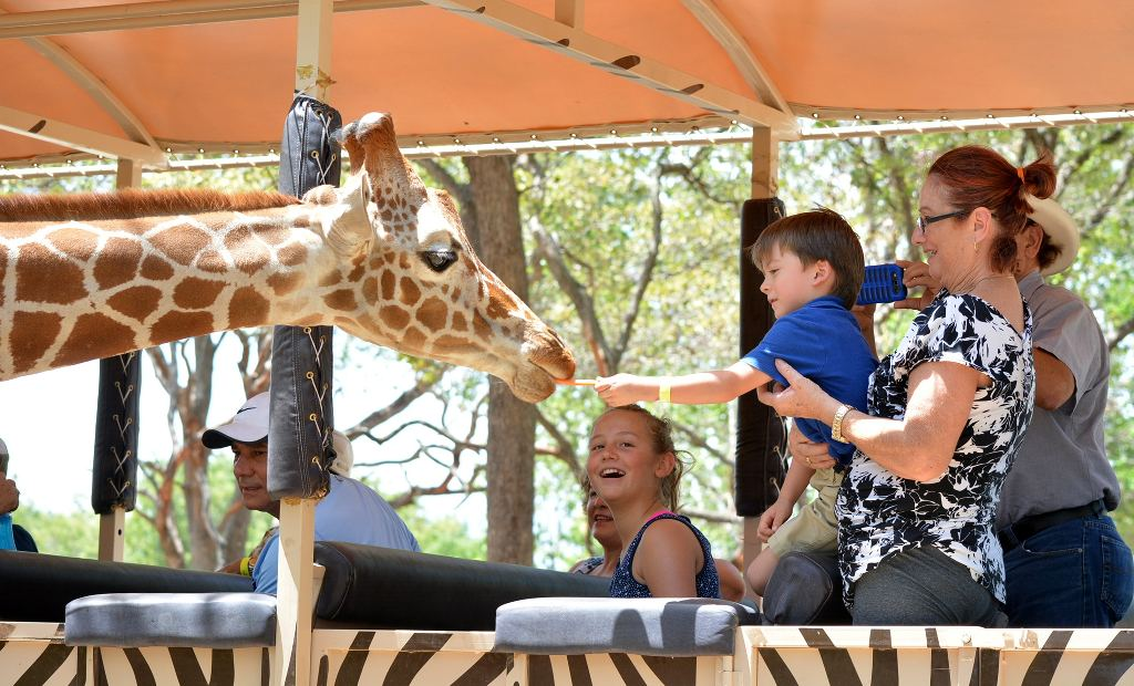Photo from Africa Safari Adventure Park, Guanacaste website