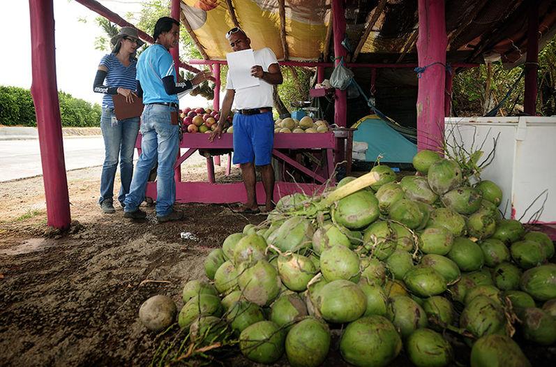 Fruteros-orilla-nueva-Canas-Liberia_LNCIMA20160427_0166_5