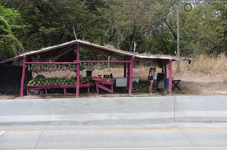 Fruteros-orilla-nueva-Canas-Liberia_LNCIMA20160427_0167_5