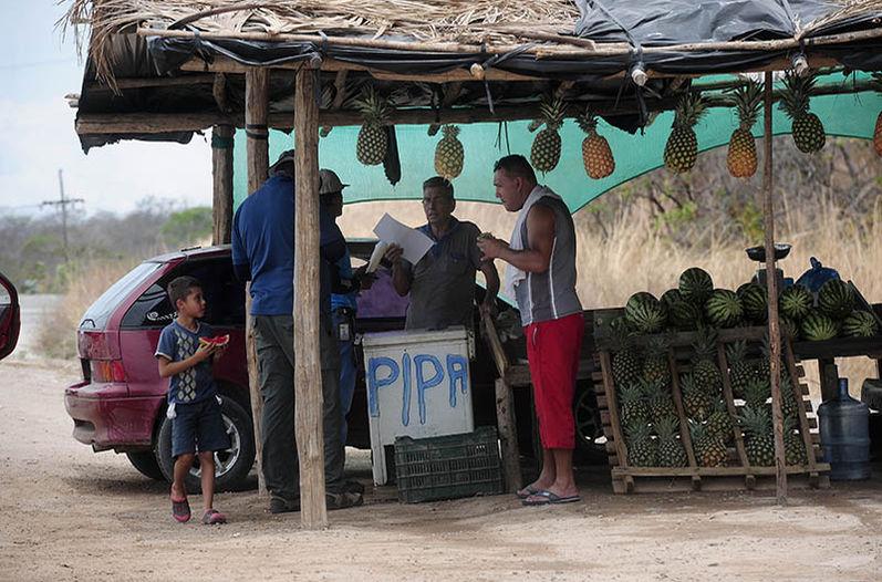 Fruteros-orilla-nueva-Canas-Liberia_LNCIMA20160427_0175_5